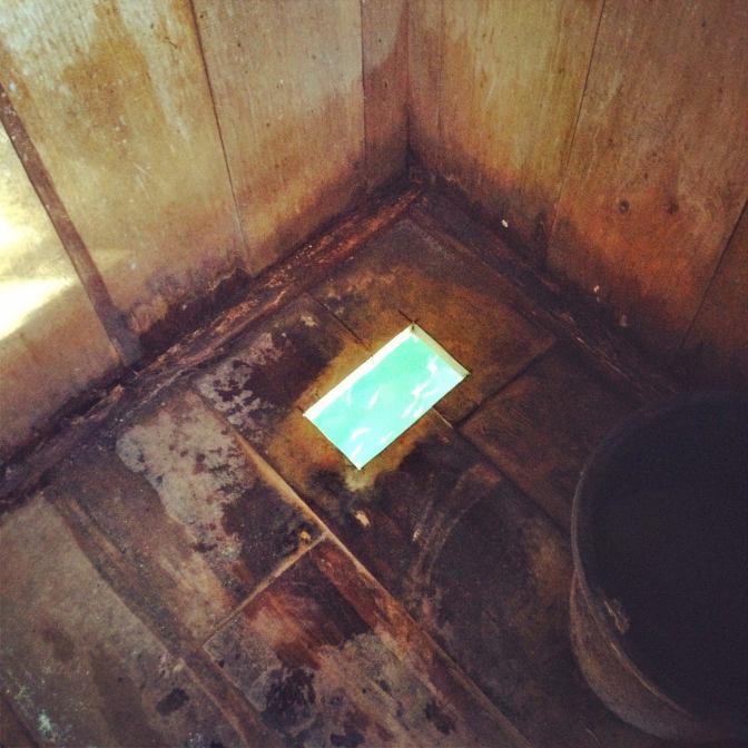 sewage fish food